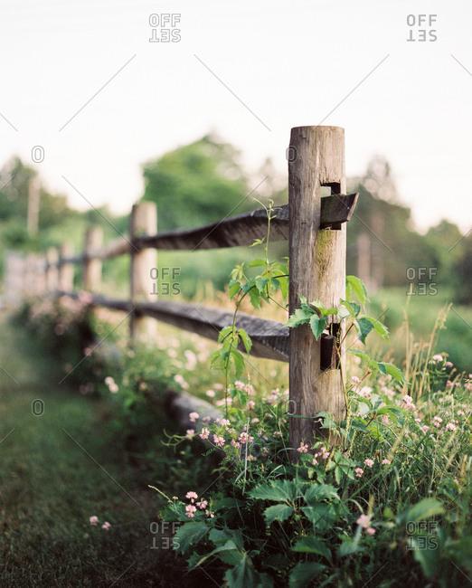 Split-rail fence in rural setting