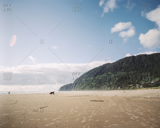 Beach on the coast of Oregon