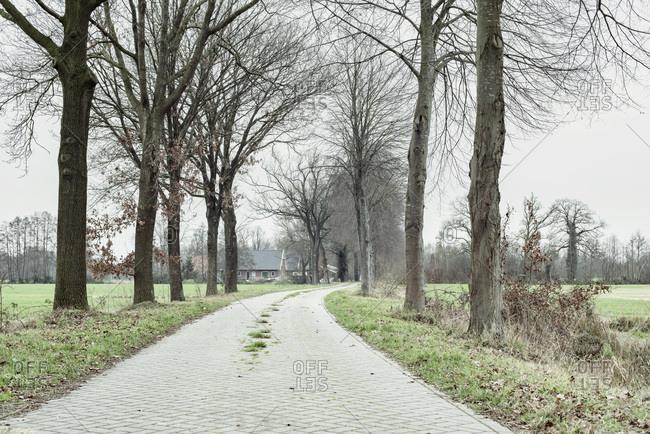 Curving rural driveway