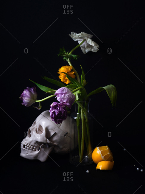 Human skull model and bouquet of tulips and ranunculus