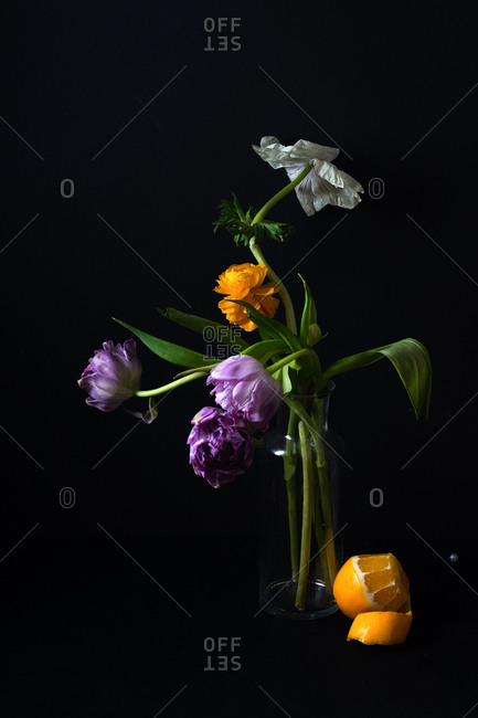 A bouquet of tulips and ranunculus in dark setting