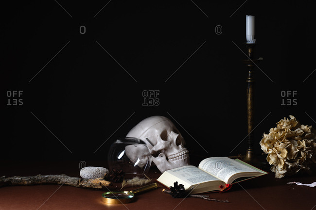 February 2, 2019: A still life with human skull model, dried hydrangea flower, book of Jean Rasin poems, copper candlestick and magnifier on brown background