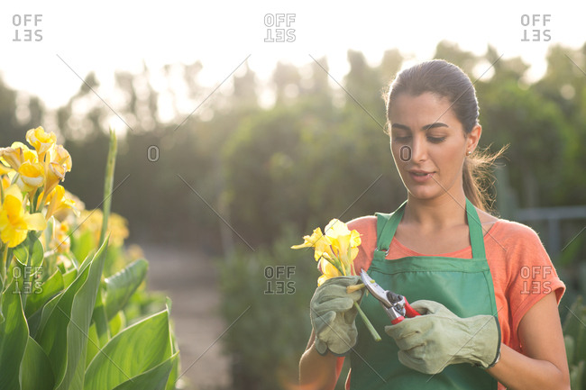 Woman pruning flower at garden.
