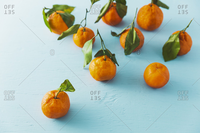 still life of chinese mandarin oranges