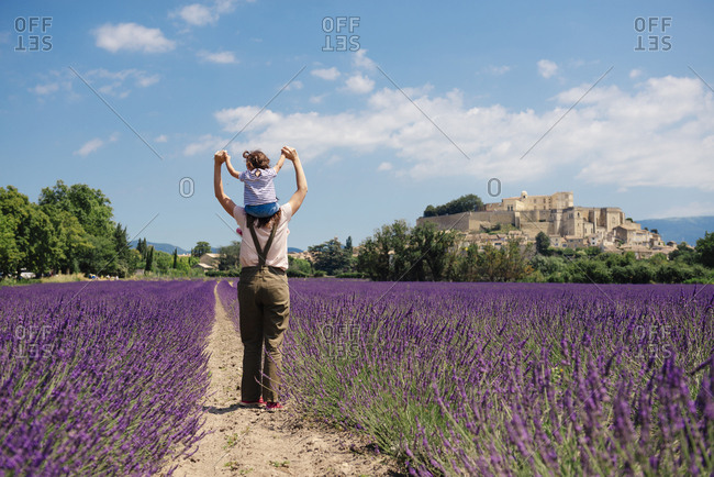 France- Grignan- back view of mother standing between lavender fields with little daughter on her shoulders