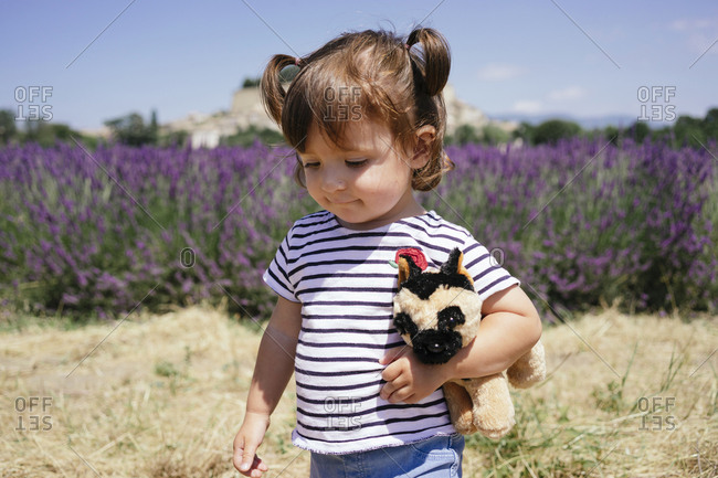 France- Grignan- portrait of baby girl with soft toy in front of lavender field