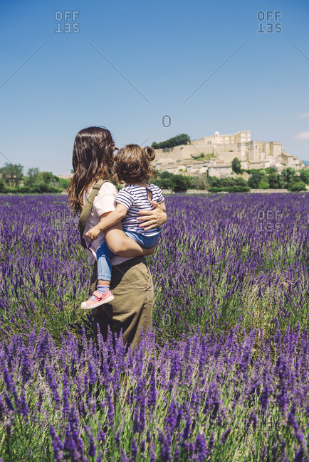 France- Grignan- back view of mother and little daughter standing together in lavender field looking at village