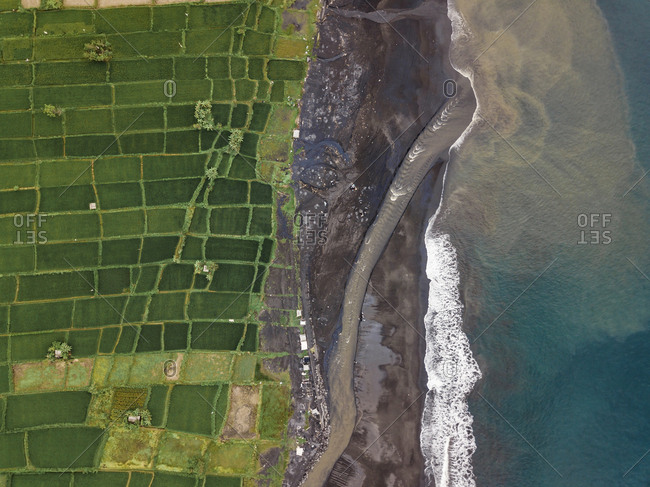 Indonesia- Bali- Keramas- Aerial view of Klotok beach- rice fields