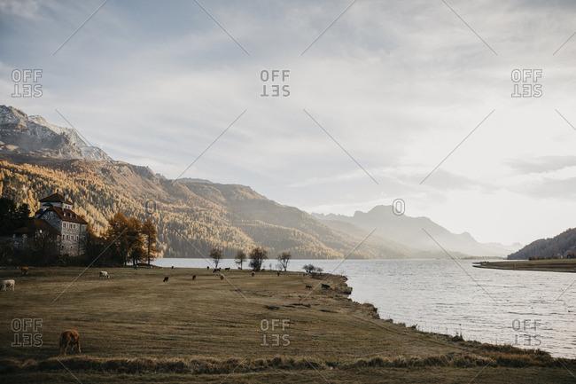 Switzerland- Lake at the Engadin