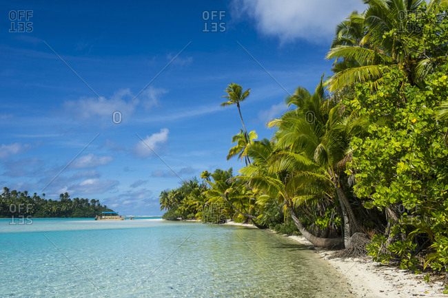 Cook Islands- Rarotonga- Aitutaki lagoon- white sand beach and palm beach