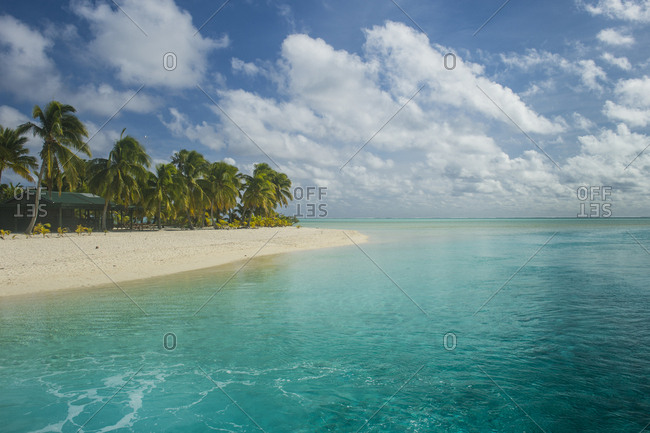 Cook Islands- Rarotonga- Aitutaki lagoon- white sand beach and palm beach