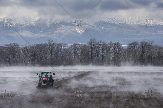 Hokkaido- Tractor seeding a field while it is vaporating from the warm ground