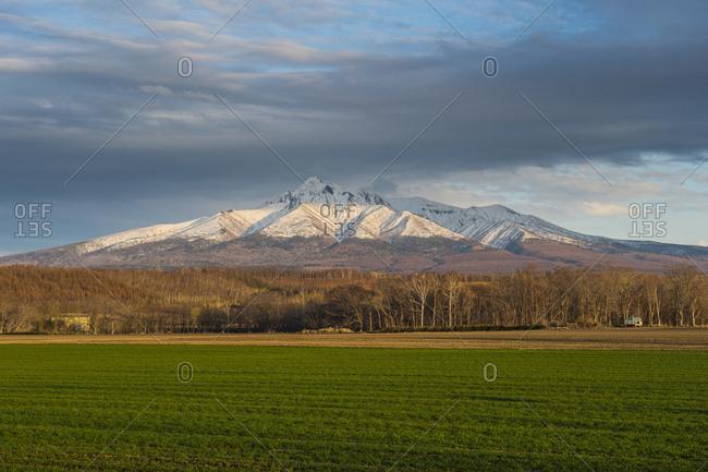 Hokkaido- Shiretoko National Park- Field and snowcapped Mountain