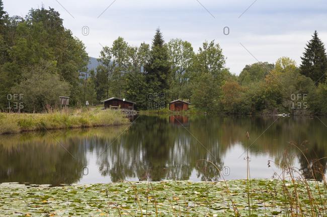 Germany- Bavaria- Oberallgaeu- Moorweiher near Oberstdorf