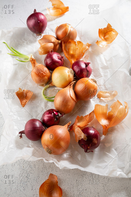 Various sorts of onions on parchment paper