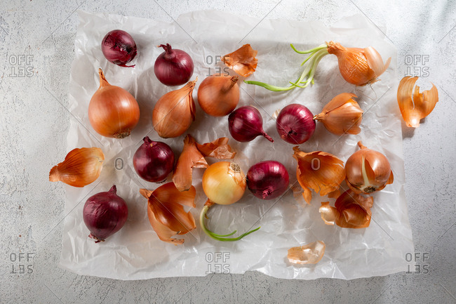 Overhead view of onions on parchment paper