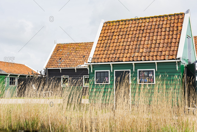 Traditional houses in the Netherlands behind reed