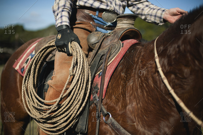 A cowboy on horseback holding a coiled lasso.