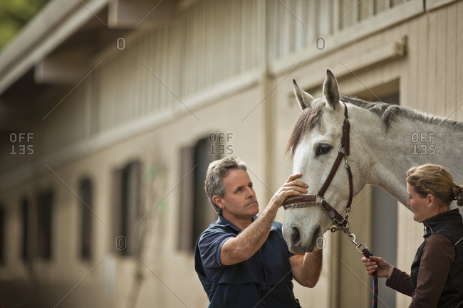 Two horse handlers checking and making preparations for their horse.