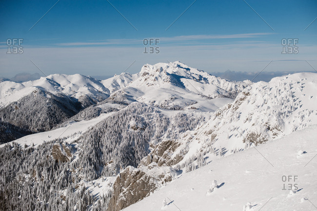 Beautiful snowy mountain and trees