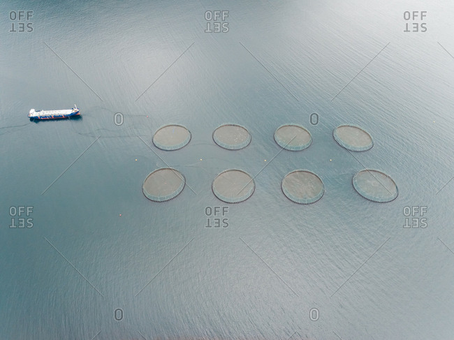 Aerial view of boat sealing near aquaculture fish farm, Faroe island.