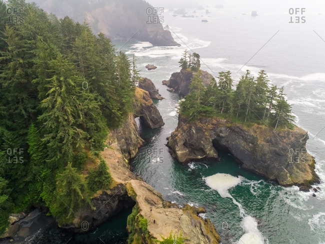 Aerial view of coastal rock formation with an dense pine tree forest, U.S.A.
