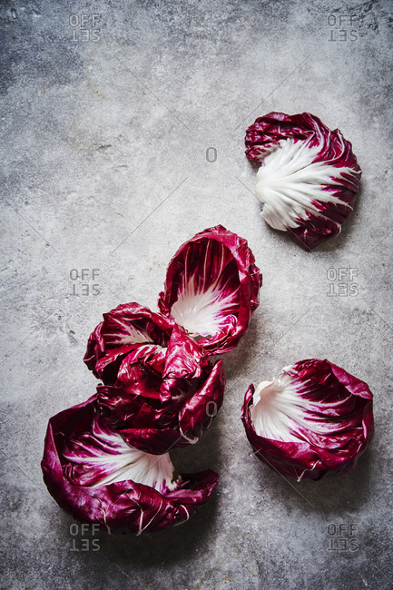 A whole radicchio from above with some leaves broken off and scattered on the surface, showing off features of the vegetable.