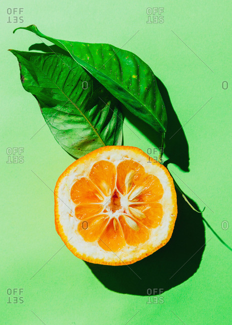 An orange with green leaves on a green background