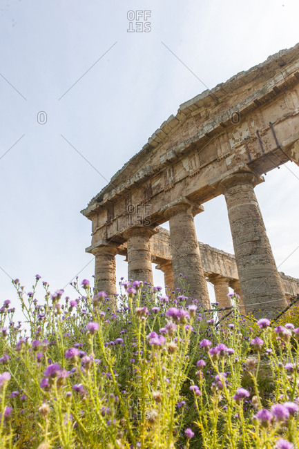 "May 12, 2014: Italy, Sicily, Calatafimi Segesta . Segesta, the temple, The temple, called the ""Great Temple"", was built during the last three decades of the 5th century BC on top of a hill to the west of the city, outside its walls. It is made up of thirty-six ten-meter tall columns and is one of the most beautiful examples of Magna Graecia architecture"