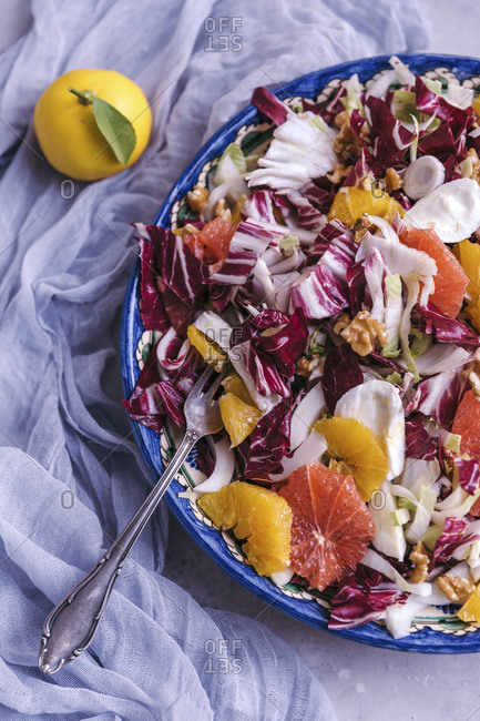 Radicchio, endivia, fennel, orange and mozzarella salad