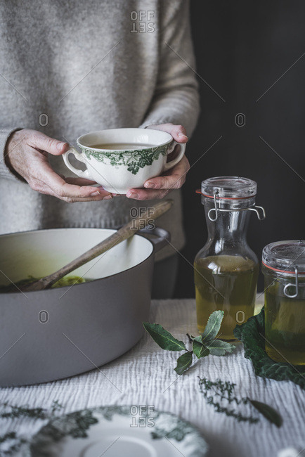 Detoxifying vegetable broth - Offset Collection