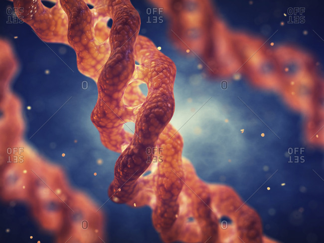 Collagen triple helix molecule - Offset