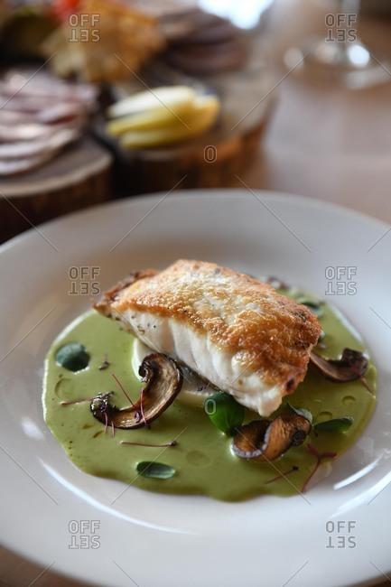 Filet of fish on a gourmet sauce