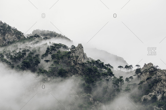 Dense fog on the hills of the Pyrenees Mountains, Europe