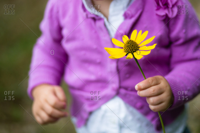 Little child holding a yellow flower
