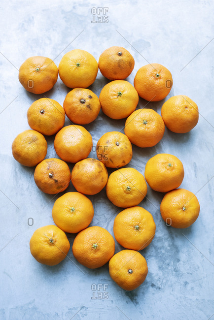 Fresh and over-ripe tangerines