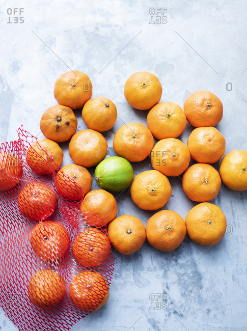 Fresh and over-ripe tangerines with one lime