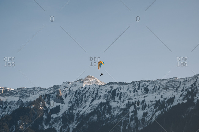 Extreme long shot of an active paraglider flying over the Swiss Alps, enjoying a recreational activity during free time.