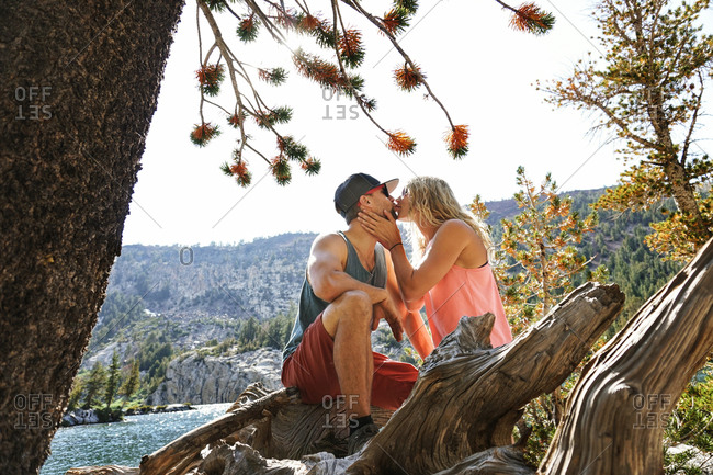 Side view of romantic couple kissing against clear sky in forest during sunny day