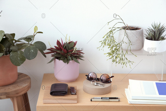 High angle view of personal accessories with plants and books arranged on wooden table against wall at home