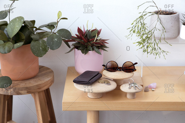 High angle view of personal accessories with potted plants and keys arranged on wooden table against wall at home