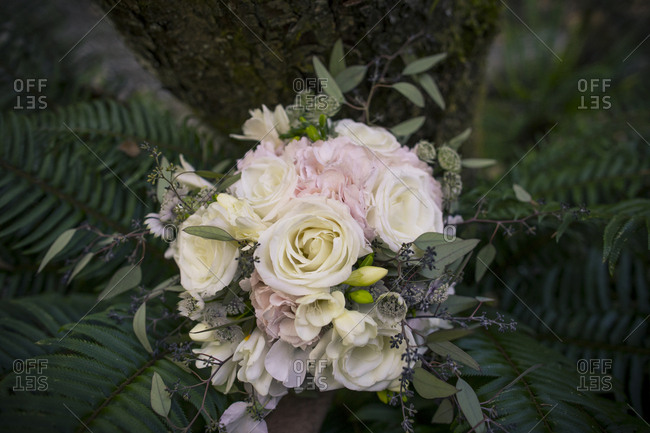 High angle view of bouquet on field in forest