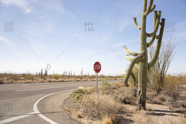 Stop sign on road against sky at Organ Pipe Cactus National Monument during sunny day