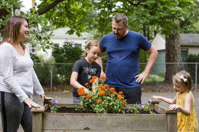Family looking at flowers growing in yard