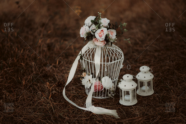 Birdcage and roses
