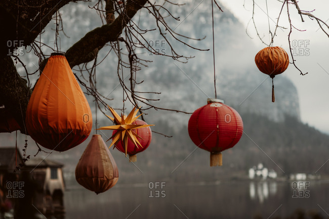 Red and orange lanterns hanging from tree