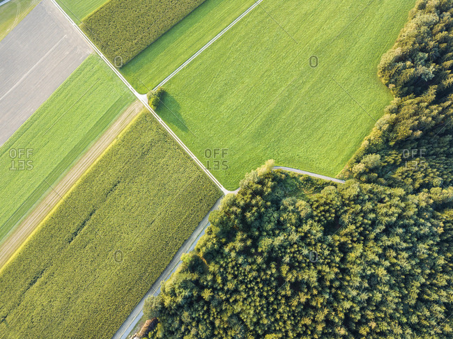 Germany- Bavaria- Passau- Aerial view of Passau region- fields