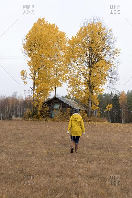 Finland- Kuopio- back view of woman in yellow rain jacket walking towards autumnal trees