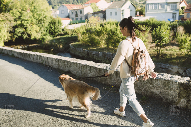 Woman walking with her golden retriever dog on a road