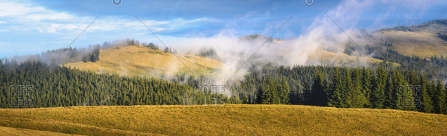 Mountains and forest in the Carpathian Mountain Range, Ukraine
